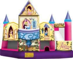 Disney Princess Comb - Dry Only