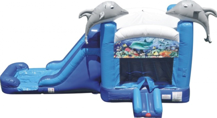 Dolphin Water Slide and Bounce