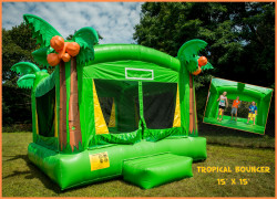 Tropical theme bounce house plymouth ma 1615491977 Tropical Bouncer