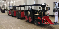 Great Canadian Express Trackless Train Additional Hour