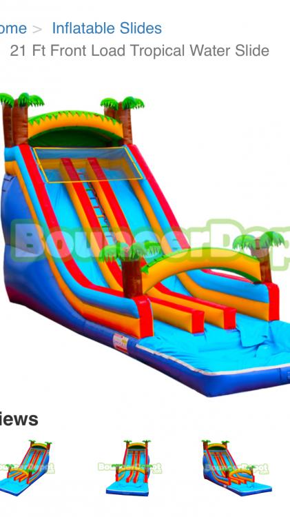 21ft Dual Lane Tropical Slide
