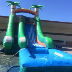 16' Tropical Water slide (wet)