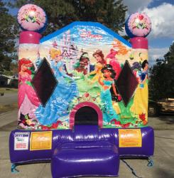 Disney Princess Small Bouncer