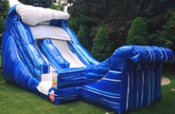 16' Wild Wave Water slide