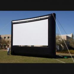 30' x 17' Movie Screen