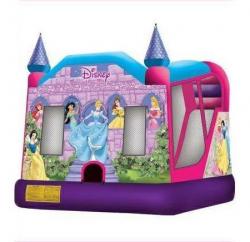 Disney Princess Wet Combo