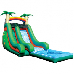 Tropical Splash Down Water Slide with Pool