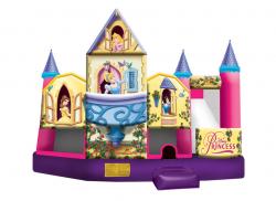 3D Disney Princess