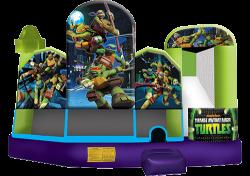 Teenage Mutant Ninja Turtles Combo