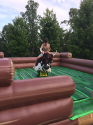 Mechanical Bull (Includes Operator For 4 hrs)