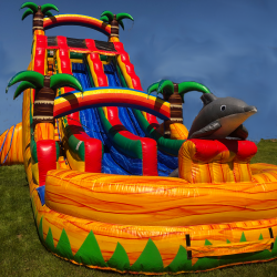 Slide - Dual Lane Tropical Paradise