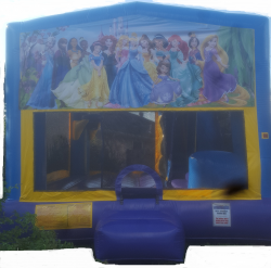 Princess Themed Bounce House  $149