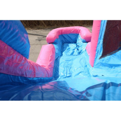 C 119 Pink Combo 5 4in1 Pink Bounce House $170