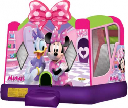 Minnie Mouse Combo  $150