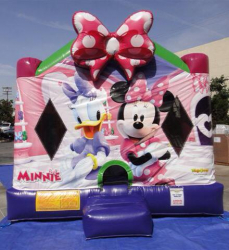 MinnieMouse2 363970 Minnie Mouse Combo $150
