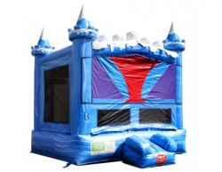 Ice Castle Bounce House  $99