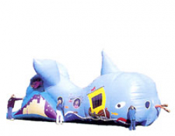 Buddy the Whale