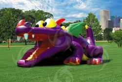 Dragon Hide N' Slide
