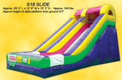 Giant Mini Slide