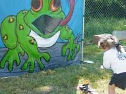 Froggy Fly Fling Toss