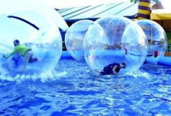 Zorb Balls (4) with Pool