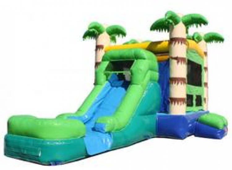 TROPICAL CASTLE WITH WATER SLIDE