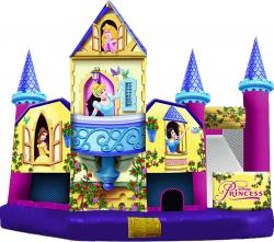 Disney Princess Castle Combo