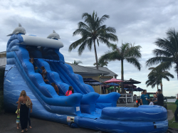 Quote Form - Bounce House and Water Slide Rentals in West Palm Beach,