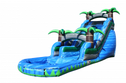 20Ft.Tall Tropical Water Slide