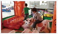 Animal Ranch
