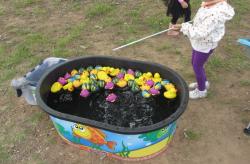 Fish Pond Carnival