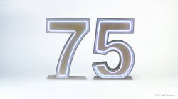 75th Neon Light Up Numbers