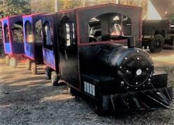 Train 1225