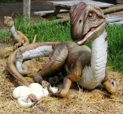 20200531 211258 855764650 Dinosaur Exhibit