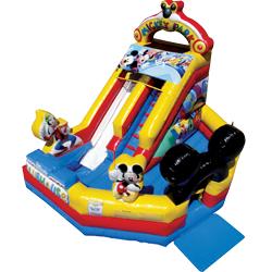 13ft Mickey Park Junior Dry Slide