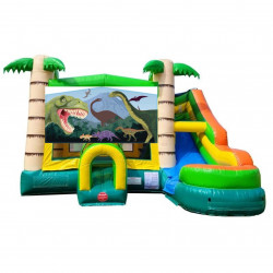 Dinosaur Theme Tropical Bounce Water Combo