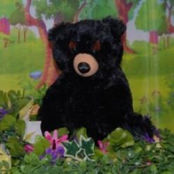 BarleyBlackBear Bear In A Box