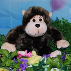 My Pawfect Bear Taffy Monkey small Bear In A Box