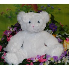 SugarWhiteBear Bear In A Box