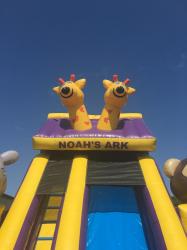 19ft Noah's Ark Water Slide