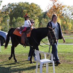 0021 IMG 7072 1617731326 Pony Rides