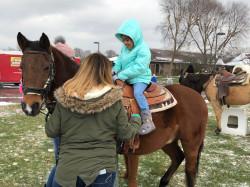 Pony.Ride.BB.Trailer 1619117051 Pony, Donkey or Horse Rides