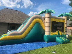 Tropical Combo (Dry Set Slide Up)