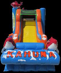kahuna combo 8b7d8859 05cf 4d5d 8bd0 3470ca153688 1614186196 Big Kahuna Combo (Waterslide Set Up)