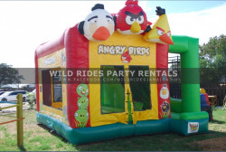 WhatsApp Image 2021 02 20 at 10.50.27 PM 1613879525 - Angry Birds Bounce w Slide