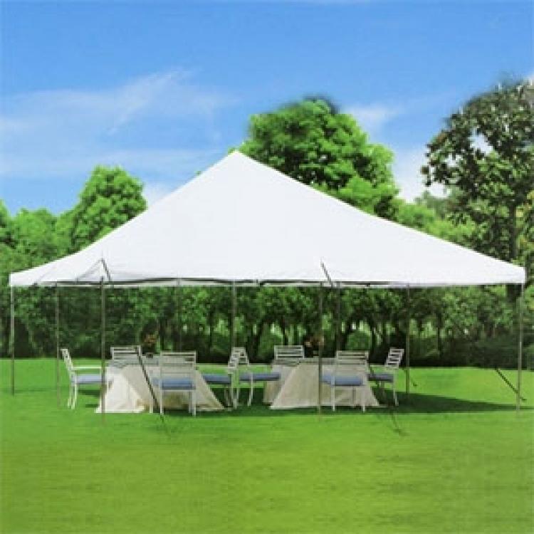 20 X Canopy Pole Tent