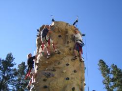 Half Dome 25' Rock Wall