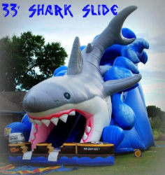 33 ft Shark Slide - Dry Only