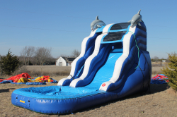 16 ft Dolphin Slide with pool - Wet