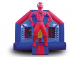 Spiderman Full Body
